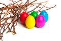 Colored Easter eggs from the branches. Royalty Free Stock Photo