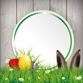 Colored easter eggs grass circle banner hare green with and sticker on the wooden background Stock Photography