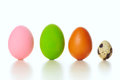 Colored eggs different and quail egg on white Royalty Free Stock Image
