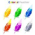 Colored Feather, isolated on white background.