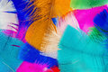 Colored feathers Royalty Free Stock Photo