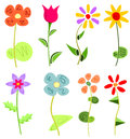 Colored floral set eight different flower species in an unusual filing Royalty Free Stock Photography