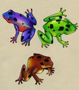 Colored frogs three of different species with blue green and brown skins and black spots Stock Images