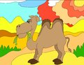 Colored illustration background of a camel