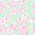 Colored orchids pattern seamless hand drawn illustration of a retro revival neo rococo style floral texture Royalty Free Stock Images