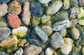 Colored stones under the clear water of Lake Baikal Royalty Free Stock Photo
