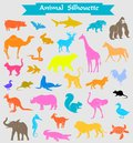 Colored Zoo Animals Silhouette...
