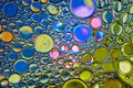 Colorful abstract water oil bubbles background. Multicolored stylish backdrop Royalty Free Stock Photo