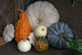 Colorful Arrangement of Pumpkins Royalty Free Stock Photo