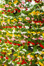 Colorful artificial fabric flowers sold in jatujak market thailand close up of Royalty Free Stock Photos