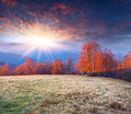 Colorful autumn landscape in the mountains morning sunrise Royalty Free Stock Images