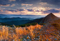 Colorful autumn landscape in the mountains sunrise Stock Photos
