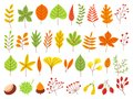 Colorful autumn leaves. Autumnal yellow leaf, forest nature orange leafage and september red leaves flat vector set Royalty Free Stock Photo