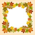 Colorful autumn leaves frame and a card Royalty Free Stock Photo