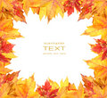 Colorful autumn leaves frame on white Stock Photography