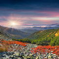 Colorful autumn morning in the mountains sunrise Stock Photos