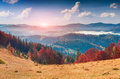 Colorful autumn panorama in the mountain village. Foggy morning Royalty Free Stock Photo