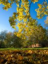 Colorful autumn park Stock Photography