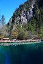 The colorful autumn scenery of Jiuzhaigou national park Royalty Free Stock Photo