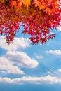 Colorful autumn season & Mountain Fuji in morning fog and red leaves at lake Kawaguchiko, Japan Royalty Free Stock Photo