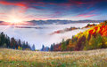 Colorful autumn sunrise in the Carpathian mountains Royalty Free Stock Photo