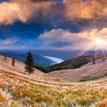 Colorful autumn sunrise in the carpathian mountains ukraine europe Royalty Free Stock Images