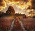 Colorful Autumn Sunset