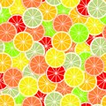 Colorful background of slices and slices of citrus fruits of orange, lime, grapefruit, tangerine, lemon and pomelo. Backdrop from