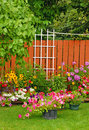 Colorful backyard garden Royalty Free Stock Photo