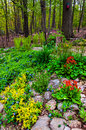 A colorful backyard woodland garden in york county pa Stock Photo