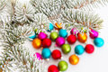 Colorful balls in snow blurred christmas lying behind a fir branch with hoarfrost Royalty Free Stock Photo