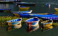 Colorful barques in pokhara nepal on fewa lake Stock Image