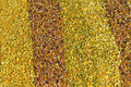 Colorful bee pollen background