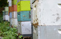 Colorful beehives bees flying around Stock Photography