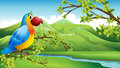 A colorful bird near the mountain illustration of Royalty Free Stock Photos