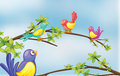 Colorful birds talking Stock Images