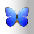 Colorful Blue Butterfly With A...