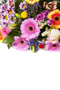 Colorful bouquet as a greeting card Stock Photos