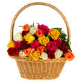 Colorful bouquet roses in basket Stock Image