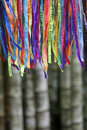 Colorful Brazilian Carnival Wish Ribbons Bamboo Forest Jungle Royalty Free Stock Photo