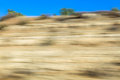 Colorful bright natural background blurred outdoor motion b Royalty Free Stock Photo