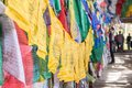 Colorful Buddhist prayer flags Royalty Free Stock Photo