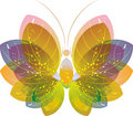 Colorful butterfly over white, eps10 Stock Photography