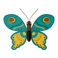 Colorful butterfly vector illustration.