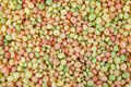 Colorful candy puffed rice in full frame Royalty Free Stock Photo