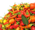 Colorful chili peppers Stock Photos
