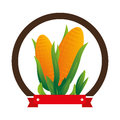 Colorful circular emblem with corn vegetable