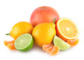 Colorful citruses Royalty Free Stock Photo