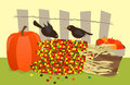 Colorful corn and birds vector illustration of small black standing on a pile of corns with pumpkins on each side a fence in the Stock Photos