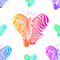 Colorful couple zebra head in heart shape Royalty Free Stock Photo